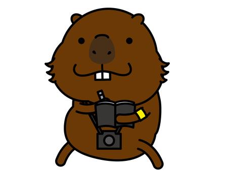 Kapibara-san 記者