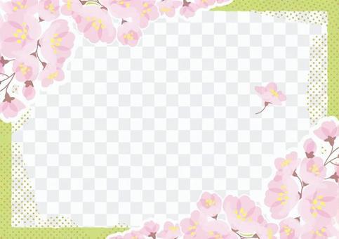 SAKURA check frame 6