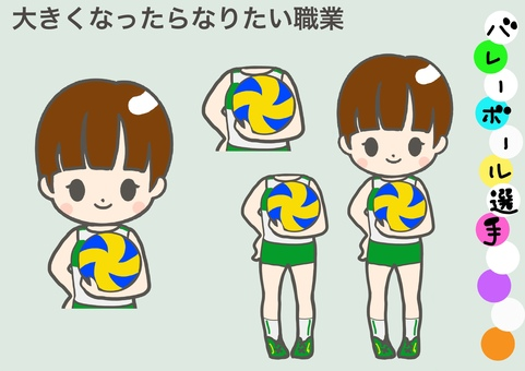 Occupation you want to be _ volleyball player _ professional player