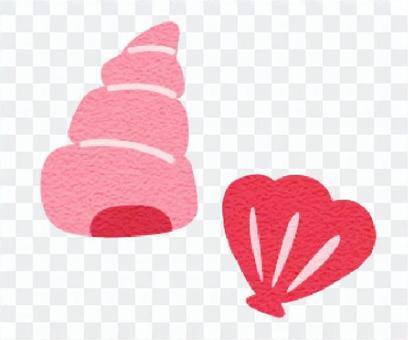 貝 ピンク