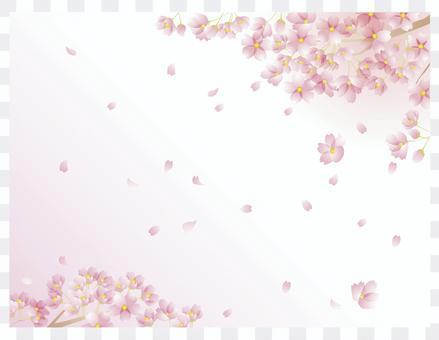 櫻花圖案3