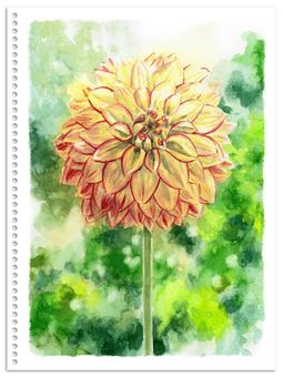 Analog watercolor pompom blooming dahlia cream color