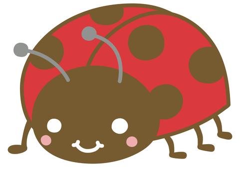 Cute ladybugs illustration