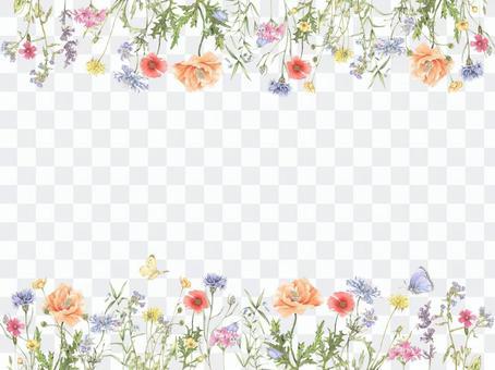 花框架花框架224  - 野花花框架