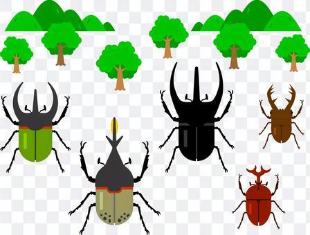 甲蟲和鍬蟲