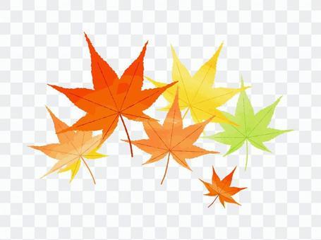 【秋季】水彩風,秋葉,楓葉,落葉