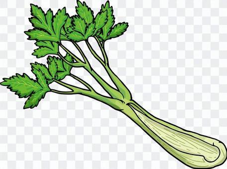 Celery / Celery