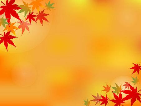 秋天的楓葉背景圖
