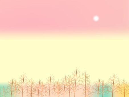 景觀與森林