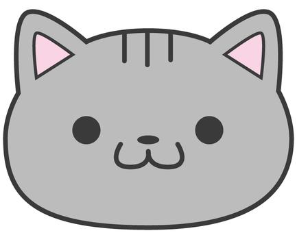Cat_美國短毛貓