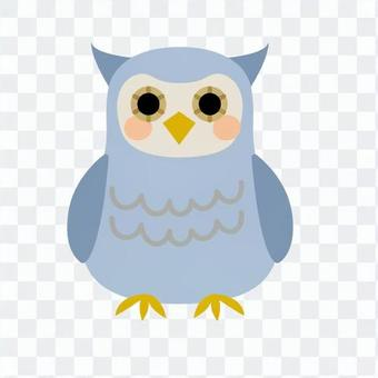 貓頭鷹,藍色