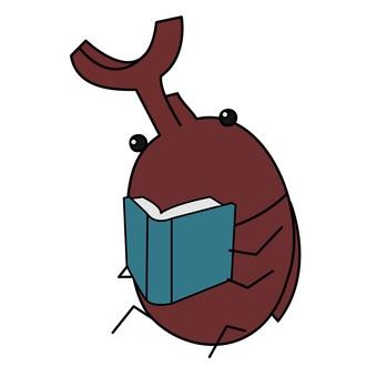 책벌레 (딱정벌레)