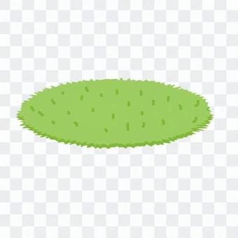 門墊(綠色皮毛)