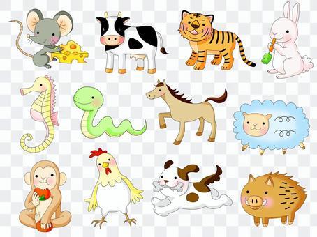 十二生肖,生肖動物集