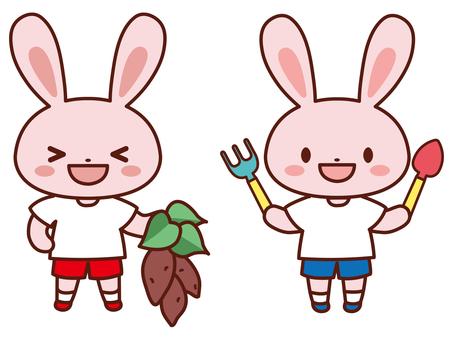 挖土豆_兔