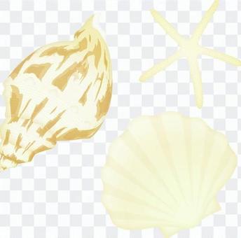 3 shellfish