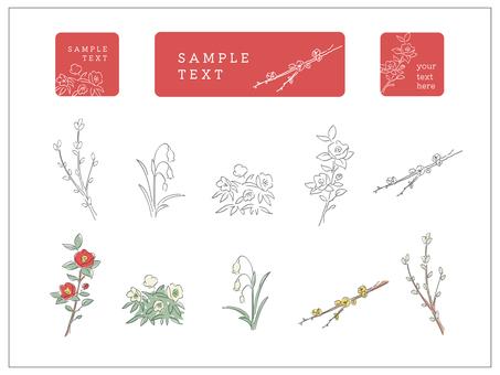 Winter simple flower
