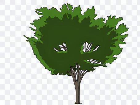 街路樹(深緑)