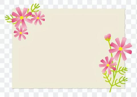 Card _ Cosmos
