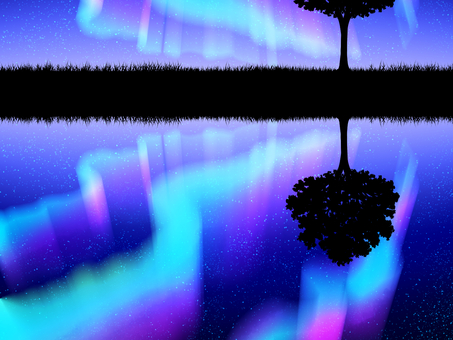 Aurora, meadow and tree silhouette