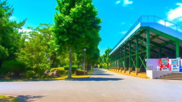 體育場周圍的人行道和植物