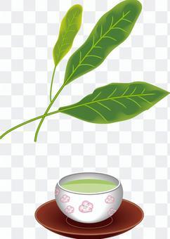 お茶 葉 おちゃっぱ 緑茶 茶摘み