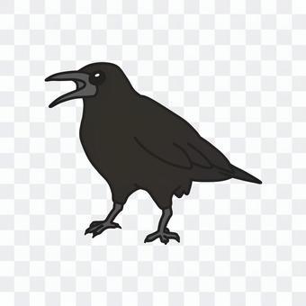 狡猾的烏鴉(彩色)