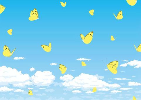 蝴蝶在蔚藍的天空中飛翔科里亞斯激怒了雲層