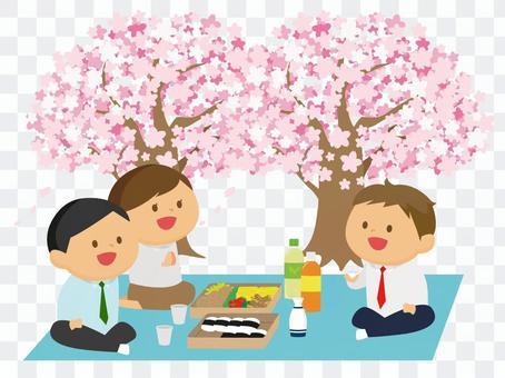 从事樱花观赏的员工