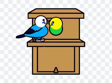 Budgerigar birdhouse
