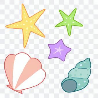 Starfish and shellfish