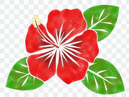 Stencil-style hibiscus