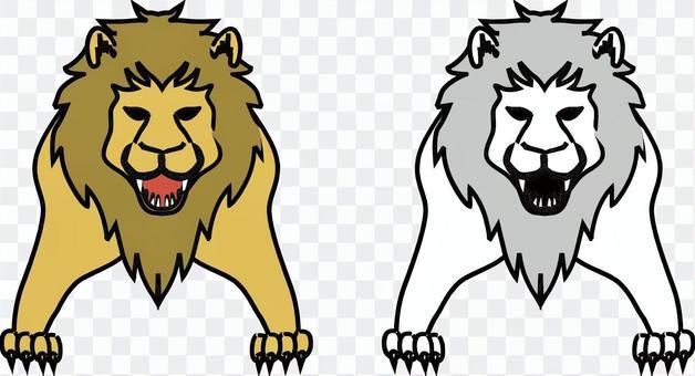 Lion Carnivorous Zoo Safari Male