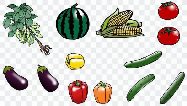 蔬菜套裝(01)