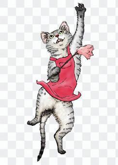 Domestic cat (Sabatra) color