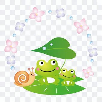 青蛙的父母和孩子的蝸牛
