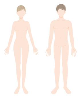 Male and female body naked whole body