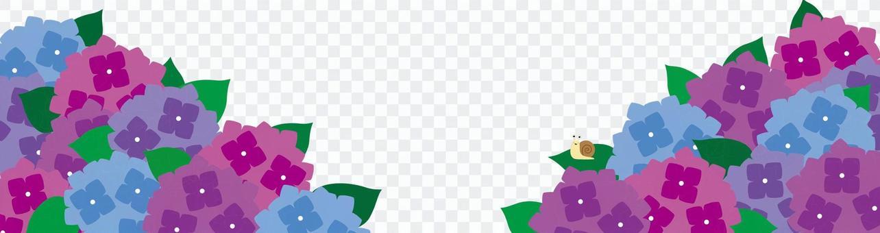 繡球花和蝸牛