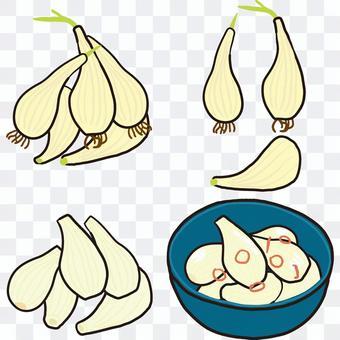 Rakkyo pickles