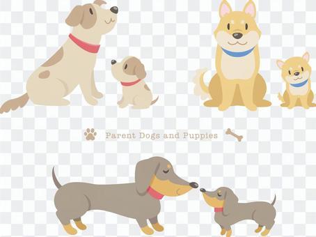 狗的父母和孩子_ 01