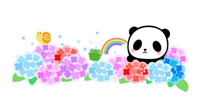 Panda with hydrangea