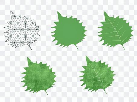 シソの葉のイラスト セット