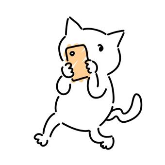 Cute white cat with a smartphone