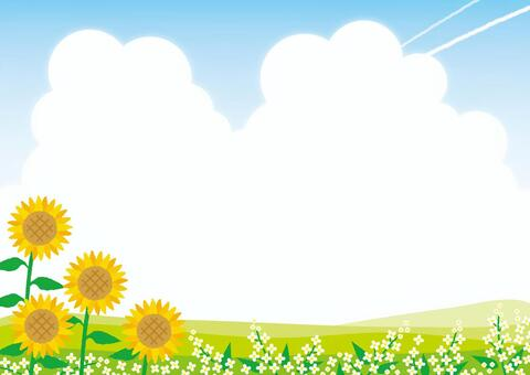 背景(向日葵和領域花)