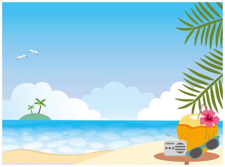 Tropical beach sea beach background