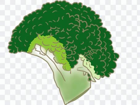 ブロッコリー(カット野菜)
