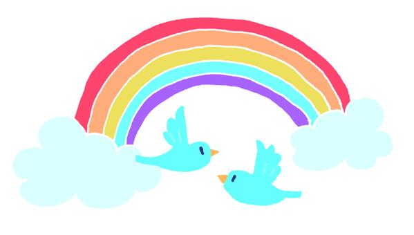 彩虹和鳥類
