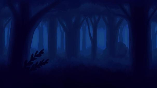 在茂密的夜森林中的背景16:9