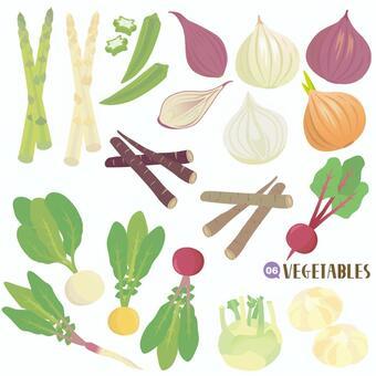 野菜セット 色々編