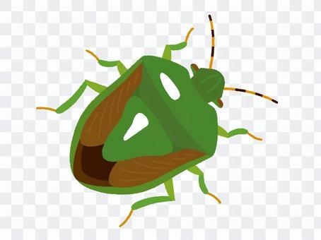 Stink bug (no line)